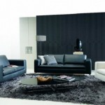 Black And White Contemporary Sofa Design (9)