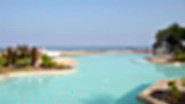 swimming pool hawaii resort vacation