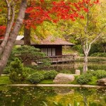 Miniature Garden Japanese Inspiration (6)