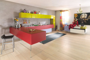 Modern Kitchen Design With Colorful Kitchen Cabinets