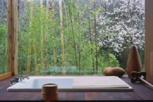 Wooden and Acrylic Bath on Japanese Bathroom Set