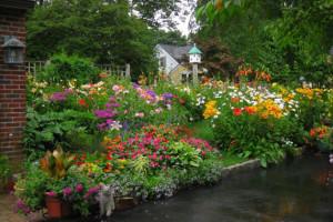 Home Garden Decor For The Fall