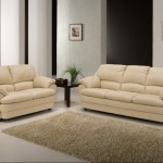 new-Leather Sofas for home interiors