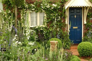 Gardening Tips And Decorating Idea