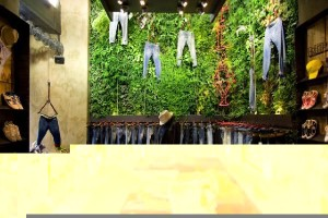 Boutique Concept Decor with Indoor and Outdoor Vertical Garden